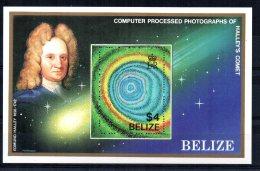 Belize - 1986 - Appearance Of Halley's Comet Miniature Sheet - MNH - Belize (1973-...)