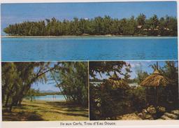 Ile Maurice,océan Indien,MAURITIUS,ILE AUX CERFS - Maurice