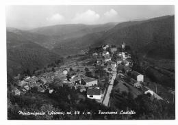 MONTEMIGNAIO PANORAMA CASTELLO  NV  FG - Arezzo