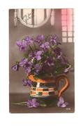 Pot De Violettes - Bonne Fête - 1361 - Fleurs