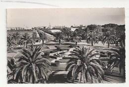 MAROC - FEDALA - FEDHALA - MOHAMMEDIA - VUE GÉNÉRALE VERS L'ÉGLISE - CPSM DENTELÉE - FORMAT CPA - Marruecos
