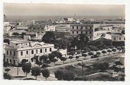 MAROC - FEDALA - FEDHALA - MOHAMMEDIA - GD HOTEL DE FRANCE, AVENUE CHARLES DE GAULLE - CPSM DENTELÉE - FORMAT CPA - Maroc