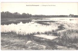 FR35 PAIMPONT - L'étang Du Pas Du Houx - Belle - Paimpont