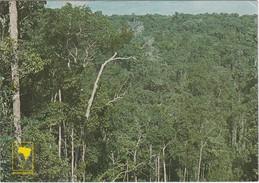 Cartolina - Postcard    - BRASILE - VISTA PANORAMICA - MANAUS - Manaus
