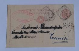 1897 INTERO POSTALE X ESTERO TUNISIA DA LIVORNO A TUNISI (166) - Stamped Stationery