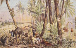 Africa Natives Gathering Dates 1914 - Other