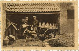 BELGIUM - LAITIERE FLAMANDE (DOG CART) B8 - Professions