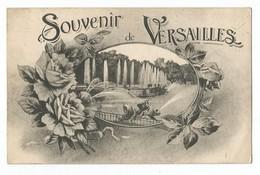 Souvenir De Versailles - Versailles