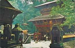 Cartolina - Postcard  - NEPAL  - TEMPLE OF BAJRA - BARAHI CHAPAGOUN - Nepal