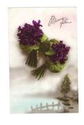 Bonne Fête - Bouquets De Violettes  - 1395 - Fêtes - Voeux