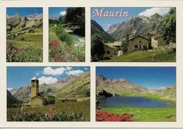CPM Maurin, La Haute Ubaye (multivies) - Frankreich