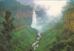 COLOMBIA-----BOGOTA----salto De Tequendama---voir 2 Scans - Colombie