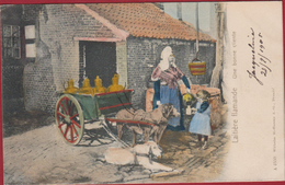 La Laitiere Flamande Hondenkar Attelage De Chien Voiture Charrette à Hoffman Dresden 1906 Handpainted Hondekar - België