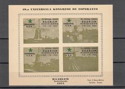 HOLANDA 1954 - NETHERLAND - 39 UNIVERSALA KONGRESO DE ESPERANTO - Esperánto