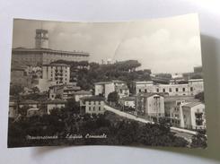 MONTEROTONDO - Edificio Comunale - Cartolina FG NV - Altre Città