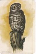 CALENDARIO DEL AÑO 1986 DE UN BUHO (OWL-CHOUETTE) (CALENDRIER-CALENDAR) - Calendarios