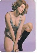 CALENDARIO DEL AÑO 1975 DE UNA CHICA SEXI (NUDE-DESNUDO) (CALENDRIER-CALENDAR) - Calendarios