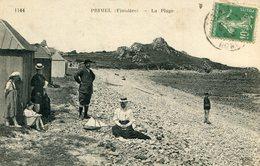 PRIMEL - Primel