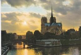 75----PARIS--crépuscule Sur Notre-dame---voir 2 Scans - Notre Dame De Paris