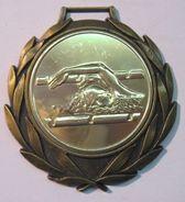 MEDAILLE NATATION FFN DS CHPT REGIONAUX 1999 EAU-LIBRE MESSIEURS - Swimming