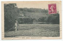 SAINT - AMAND : MONTROND VUE DU CHER - Saint-Amand-Montrond