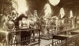 Royaume Uni Tours De Londres Arsenal Equestre Armures Ancienne Photo 1880 - War, Military