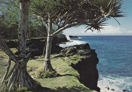 ILE DE LA REUNION--côte Sud De L'ile---VACOAS--voir 2 Scans - Autres