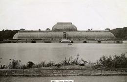 Royaume Uni Londres London Le Kew Gardens Ancienne Photo 1900 - Places