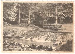Saint-Hubert - Forêt De Saint-Hubert - Le Pont Mauricy - Ed. Imprimerie-Librairie-Papeterie Albert Gofflot, Saint-Hubert - Saint-Hubert