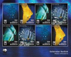 MICRONESIA  IGPC # 1441 SH ; MINT N H STAMPS OF WWF MARINE LIFE ; ORBICULAR BATFISH - Micronesia