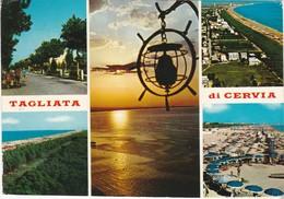 Cartolina - Postcard   -  RAVENNA - TAGLIATA DI CERVIA - Ravenna