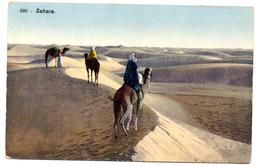 Tarjeta Postal  Sahara. - Sahara Occidental