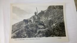 Cpa Andorra Andore Andorra Caçador D'isards - Andorre