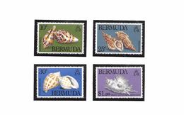 Bermuda Mi.Nr 408-411 MNH 1982 Shells / Sealife - Bermudes