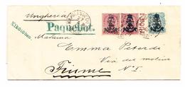 Italien ADRIA-Schiffspost Napoli 27.2.1901 Nach Fiume Frankiert Mit It. Marken Aufdruck Stefanskrone Und Gekruezte Anker - 1900-44 Victor Emmanuel III.