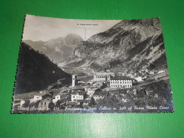 Cartolina Timau ( Carnia ) - Panorama E Pizzo Collina Al Passo Monte Croce 1950 - Udine