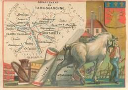 CHROMO - Département Du Tarn-et-Garonne ( 82 ) - Montauban Moissac Grisolles Caussade Montpezat Caylus St-Antonin - Trade Cards