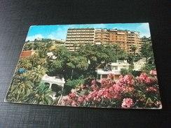 HOTEL CAP AMPELIO BORDIGHERA LIGURIA - Hotels & Gaststätten