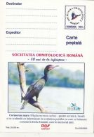 59557- GREAT CORMORANT, BIRDS, POSTCARD STATIONERY, 2000, ROMANIA