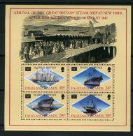 FALKLAND ( BLOC ) : Y&T N°  6  BLOC  NEUF  SANS  TRACE  DE  CHARNIERE , A  VOIR . - Falklandeilanden