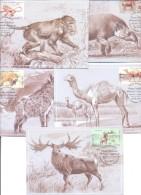 2016. Moldova, Dissapear Animals, 5 Maxicards,  Mint/** - Moldawien (Moldau)