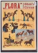 FORMAT 10x15cm - OHM'S CIRCUS IN THEATER FLORA - HAMBURG ALTONA - TB - Cirque