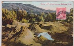 LB 14 : Nouvelle  Zélande :  Boiling  Mud , Whakarewarewa  , Paysage - Nouvelle-Zélande