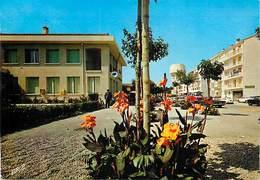PIE-17-F-CH.2043 :  CANET DU ROUSSILLON - Canet En Roussillon