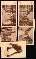 MUSEUM ARCHAEOLOGY STONE SCIENCE BOTANIC LAB ARGENTINA X5 ORANGUTAN Vintage Original Ca1900 POSTCARD CPA AK (W4_3381) - América