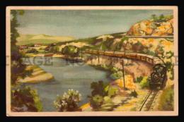 ARGENTINA RAILWAY TRAIN ARTIST DRAWN  Vintage Original Ca1950 POSTCARD CPA AK (W4_3384) - Trenes