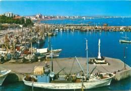 CPM - CATTOLICA - La Darsena - Italie