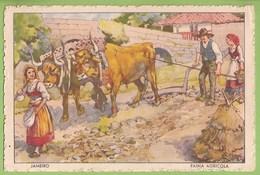 Portugal - Feira Agricola - Costumes Portugueses - Ilustrador - Ilustração - Illustrator - Illustrateur - Illustration - Andere Zeichner