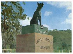 (933) Australia - NSW - Gundegai Memorial With Dog - Monuments