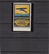1924.- FLUGMARKE FLUGTAG SOLOTHURN-GRENCHEN - Aéreo